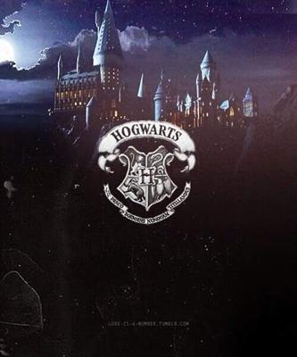 Fanfic / Fanfiction Kali Black uma visão diferente do mundo Bruxo - Capítulo 5 - Hogwarts
