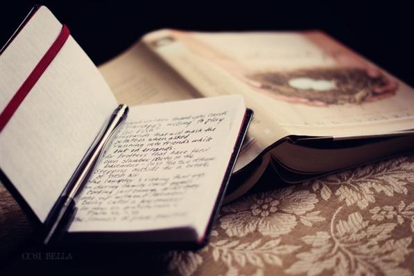 Fanfic / Fanfiction Metamorfose - Capítulo 1 - Escrever