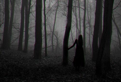 Fanfic / Fanfiction My Creepypastas - Capítulo 3 - A Vila Amaldiçoada.