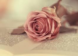 Fanfic / Fanfiction O amor sobrenatural de Isabel... - Capítulo 1 - Apresentações...