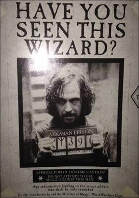 Fanfic / Fanfiction Os contos de Harry Potter - Capítulo 4 - Sirius Black
