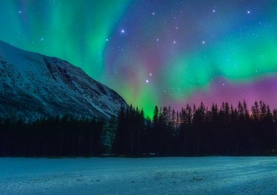 Fanfic / Fanfiction Os queridinhos da América - Capítulo 21 - Amor sob as luzes do norte.
