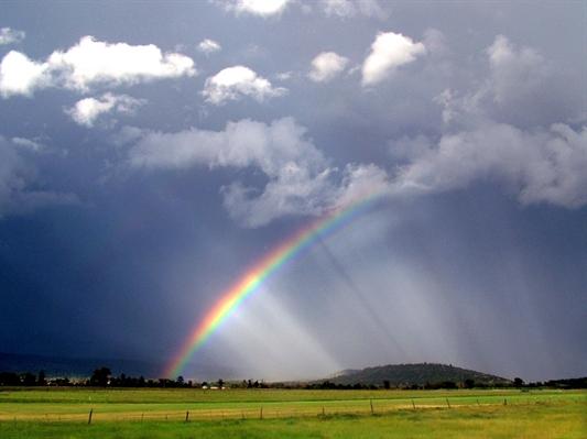 Fanfic / Fanfiction Platonic Love ♡ - Capítulo 3 - Depois da tempestade sempre vem o arco- íris
