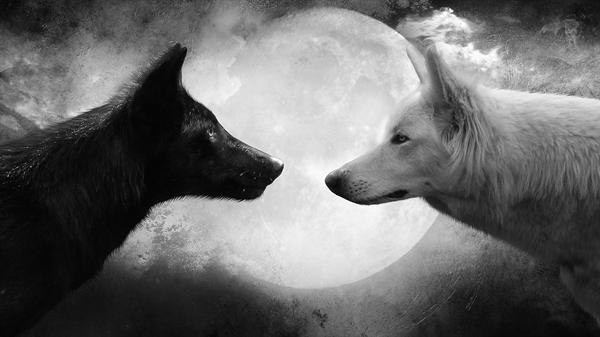 Fanfic / Fanfiction Príncipe da Lua - Capítulo 2 - Talvez eu realmente o ame...