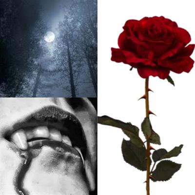 Fanfic / Fanfiction The Chosen (Ziam Mayne) - Capítulo 2 - Eu sou Zayn Malik