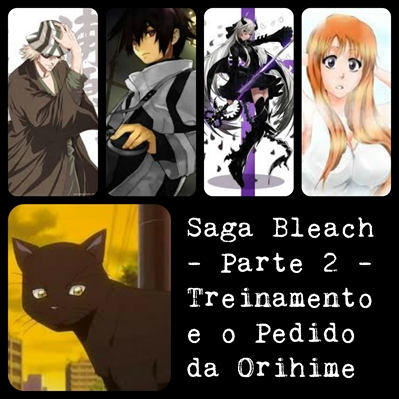 Fanfic / Fanfiction Uma Aventura Inesperada (Semi-Interativa) - Capítulo 3 - Saga Bleach - Parte 2 - Treinamento e Pedido de Orihime