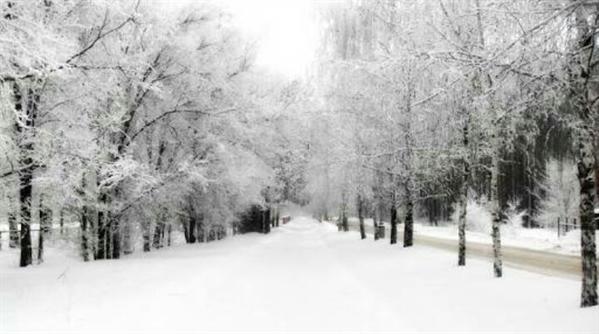 Fanfic / Fanfiction Vida Nova! - Capítulo 4 - Neve!