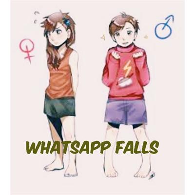 Fanfic / Fanfiction WhatsApp Falls - Capítulo 3 - Ill