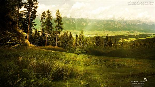 Fanfic / Fanfiction Castle of Illusion - Estrelando Kunpimook Bhuwakul - Capítulo 4 - A Floresta Encantada - Parte 2