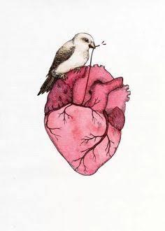 Fanfic / Fanfiction Desabafo - Capítulo 6 - Meu coração é apenas um órgão