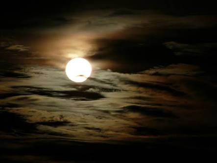 Fanfic / Fanfiction Feridas da Alma - Capítulo 3 - O amor e a solidao da Lua