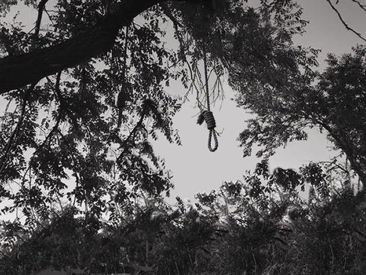 Fanfic / Fanfiction Sonhos Não Mordem - Capítulo 2 - O Garoto da Árvore