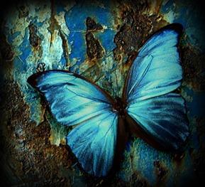 Fanfic / Fanfiction The Parallel Wonderland - Capítulo 4 - Resgatando uma... mariposa?