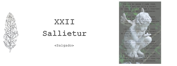 Fanfic / Fanfiction O anjo de vidro - Capítulo 23 - Capítulo XXII - Sallietur