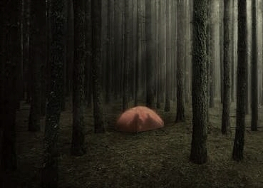 Fanfic / Fanfiction A Barraca: Uma Aventura Na Floresta - Capítulo 1 - A Barraca:Uma Aventura Na Floresta