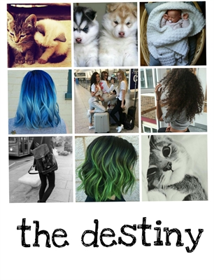 Fanfic / Fanfiction Blue Sky - Capítulo 1 - The destiny