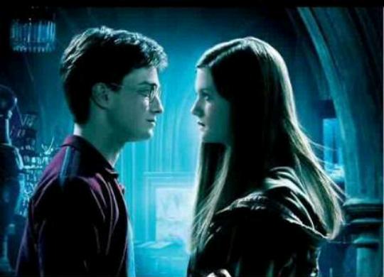 Fanfic / Fanfiction Harry Potter ea Profecia Perdida - Capítulo 2 - Mais um dia na Toca