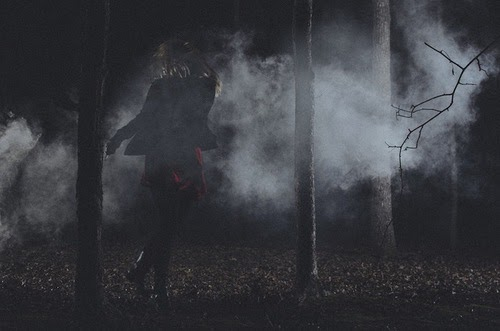 Fanfic / Fanfiction Hunters the Night - Capítulo 5 - A Origem de um Vampiro.