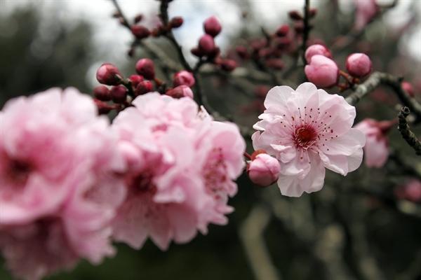 Fanfic / Fanfiction My Sweet Angel - Capítulo 1 - Capítulo 1 Fim de primavera