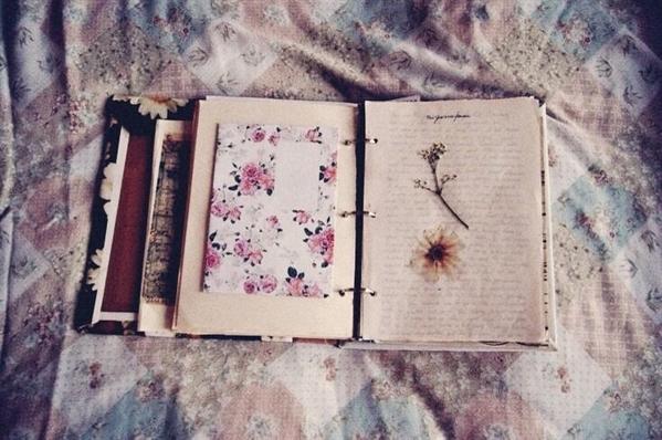 Fanfic / Fanfiction Paginas de um velho diário - Capítulo 1 - Não se apaixone