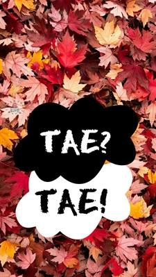 Fanfic / Fanfiction Pequenos imagines (kpop-boyband) - Capítulo 4 - Imagine Tae/V (Bts)