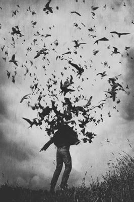Fanfic / Fanfiction Poemas de uma apaixonada solitária - Capítulo 2 - Afraid
