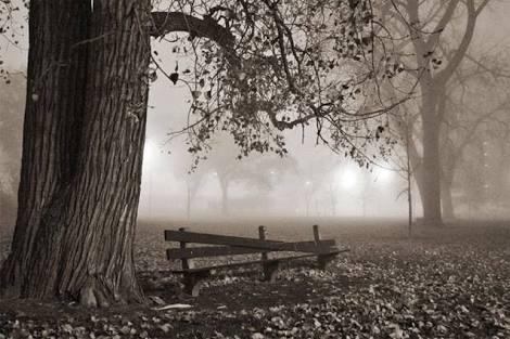 Fanfic / Fanfiction Spring of the Dead - Capítulo 1 - Mistério no Acampamento