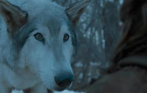 Fanfic / Fanfiction The King of Winter - Capítulo 5 - Encontros.
