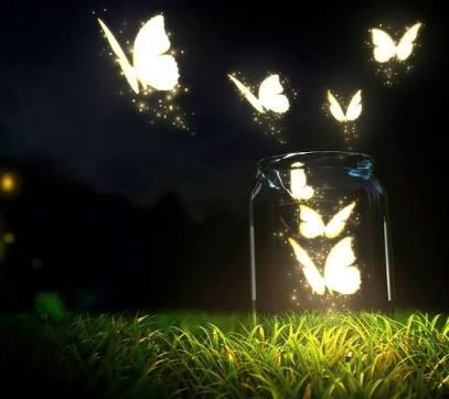Fanfic / Fanfiction What wins? - Capítulo 15 - Butterflies