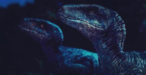 Fanfic / Fanfiction Jurassic World - Rapter - Capítulo 23 - Todo mundo dormindo