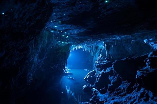 Fanfic / Fanfiction Ordem da Fênix - Capítulo 12 - Cap 11:aventura na caverna , muitos trolls , o despertar...