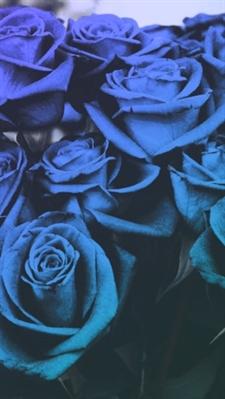 Fanfic / Fanfiction 4 Walls - XiuChen - Capítulo 8 - Se tornar azul