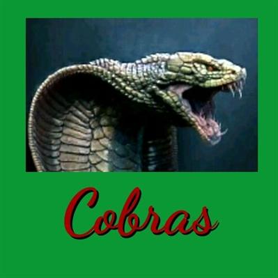 Fanfic / Fanfiction A família Real. - Capítulo 4 - Emma,a assasina de cobras.