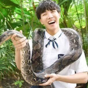 Fanfic / Fanfiction Imagine Suga e J hope - Capítulo 9 - I hate snakeu