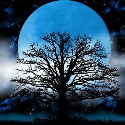 Fanfic / Fanfiction Lua cheia - Capítulo 1 - Segredos