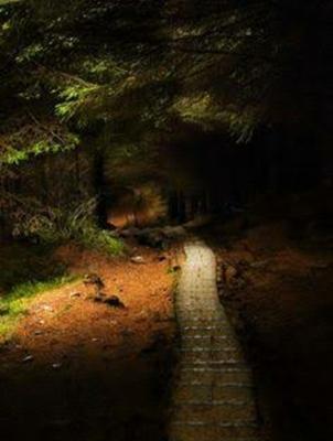Fanfic / Fanfiction Me dê amor ( Reescrevendo! ) - Capítulo 7 - Floresta da deusa da Lua