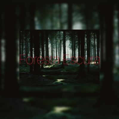 Fanfic / Fanfiction My Vampire - Park Jimin (Hiatus) - Capítulo 3 - 3 - Floresta Escura