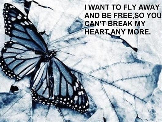Fanfic / Fanfiction Untrue Butterfly - Capítulo 13 - Baby, Dont Cut