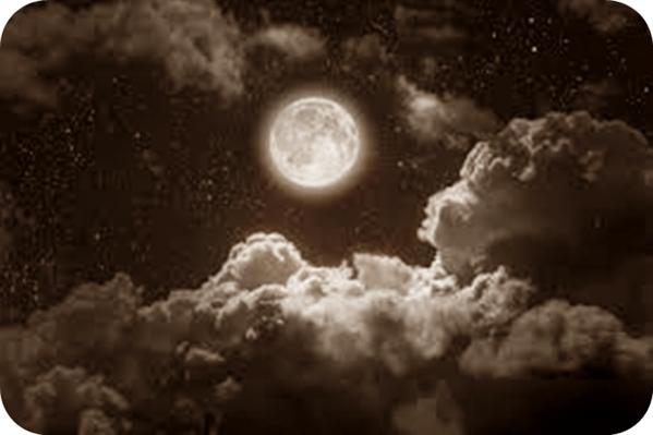 Fanfic / Fanfiction Vida - Capítulo 23 - Pálida Lua