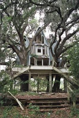 Fanfic / Fanfiction Vizinho vampiro.(mitw, jvtista,cellps e outros) - Capítulo 12 - Casa na árvore