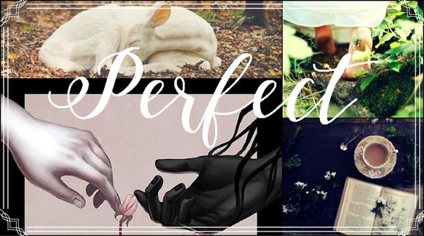 Fanfic / Fanfiction Winter Flower - Capítulo 5 - Perfect