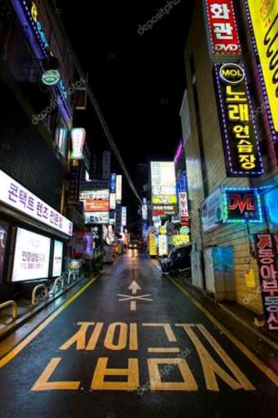 Fanfic / Fanfiction My Sexy Professor IMAGINE JUNGKOOK - Capítulo 1 - Enfim na Coréia
