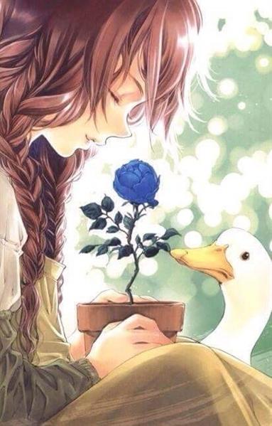 Fanfic / Fanfiction Red Rose My Dear - Capítulo 1 - Rosas na varanda