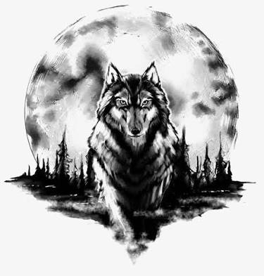 Fanfic / Fanfiction -Lyna-A história de uma menina loba- - Capítulo 5 - -Lyna-Capítulo 5-