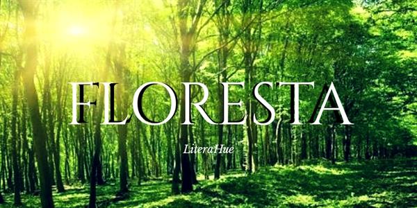 Fanfic / Fanfiction Floresta - Capítulo 1 - Capítulo Único