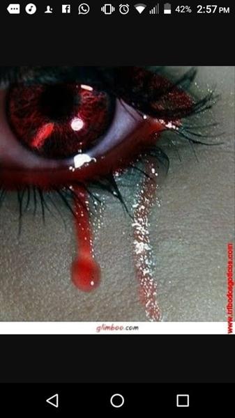 Fanfic / Fanfiction Lágrimas De Sangue - Capítulo 9 - Cap-08 Quem e você?