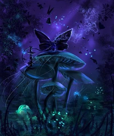 Fanfic / Fanfiction A garota e a toca do coelho - Capítulo 1 - A mariposa