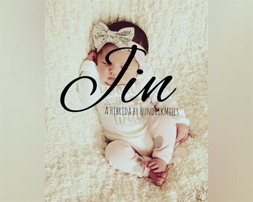 Fanfic / Fanfiction A Híbrida - Capítulo 17 - Jin