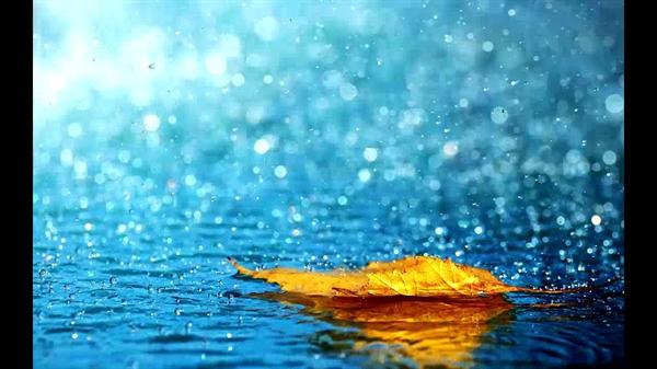 Fanfic / Fanfiction O Nerd e o Popular - Jikook, Namjin, Sope... - Capítulo 3 - The rain