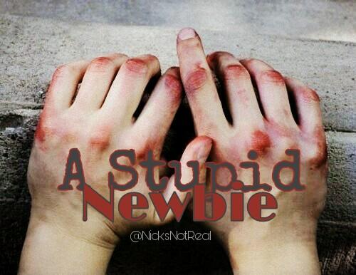 Fanfic / Fanfiction .A Stupid Newbie; - Capítulo 1 - .Single Chapter;